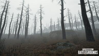 Aktualizacja do PUBG przynosi nową broń oraz mgłę. Osiągnięto milion graczy