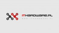 GPU od Nvidii coraz chętniej wybierane